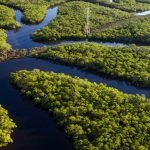 """""""Dalla parte della foresta amazzonica per dare un senso al progresso, anche agricolo"""""""